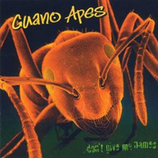 album Dont Give Me Names by Guano Apes