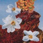 Sunny Casinos