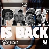 Pack Is Back