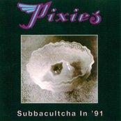 Subbacultcha in '91