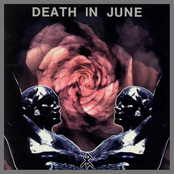 album Rose Clouds of Holocaust by Death in June