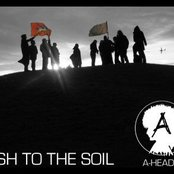 Ash to the Soil