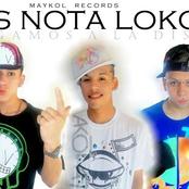Musica de Los Nota LoKoS