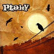 PtakY