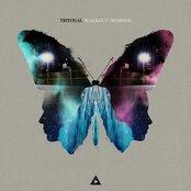 Blackout (Remixes)