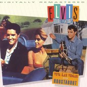 Elvis Double Features Viva Las Vegas & Roustabou