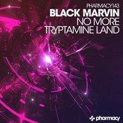 No More / Tryptamine Land