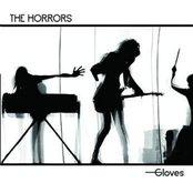 Gloves (Live)