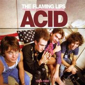 Finally the Punk Rockers Are Taking Acid: 1983-1988