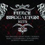 Fierce Reggaeton Hits (EX)