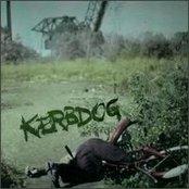 Kerbdog