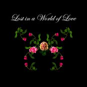 Lost in a World of Love