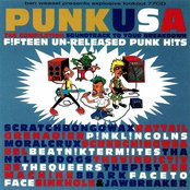 Ben Weasel Presents: Punk USA - The Compilation Soundtrack To Your Breakdown
