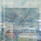 RAINDRONE