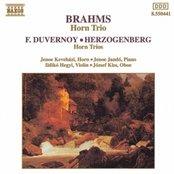 BRAHMS / DUVERNOY / HERZOGENBERG: Horn Trios