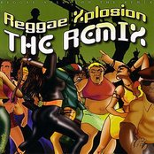 Reggae Xplosion The Remix