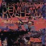 Dementia/Dyslexia