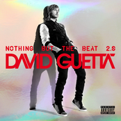 album Nothing But The Beat 2.0 by David Guetta & Afrojack