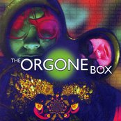 The Orgone Box
