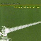 Seeds of Mutation
