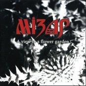 A View To A Flower Garden