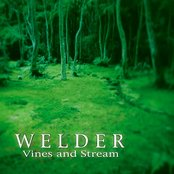 Vines and Stream