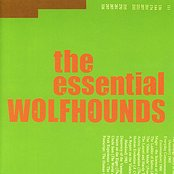 The Essential Wolfhounds