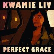 Perfect Grace
