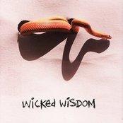 Wicked Wisdom