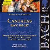 J.S. Bach - Cantatas BWV 185-187