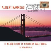 The Very Best Of - It Never Rains In Southern California