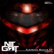 Synthetic Heaven EP
