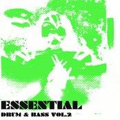 Essential Drum & Bass Vol 2