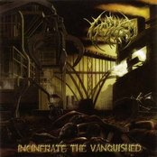 Incinerate the Vanquished