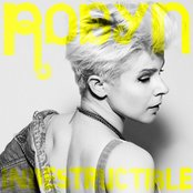 Indestructible (Remixes)