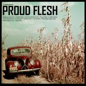 Proud Flesh
