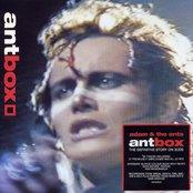 AntBox (AntDisc 1)