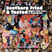 Southern Fried & Tested (Mighty Dub Katz & Cagedbaby)