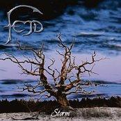Fejd - Storm