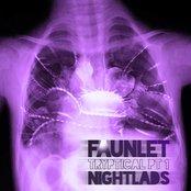 Tryptical Pt1: Nightlads