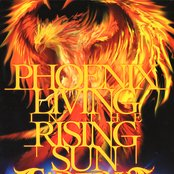 PHOENIX LIVING IN THE RISING SUN
