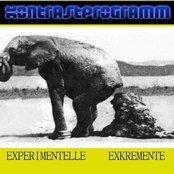 Experimentelle Exkremente