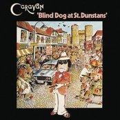 Blind Dog At St. Dunstans