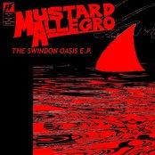 The Swindon Oasis EP