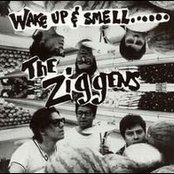 Wake Up & Smell the Ziggens