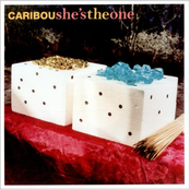 album She's The One by Caribou