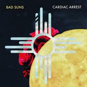 Cardiac Arrest - Single