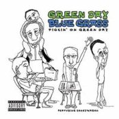 Green Day Bluegrass: Pickin' On Green Day