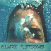 Flutterboard