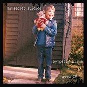 My Secret Suicide